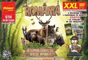Vizual Romania - descopera frumusetile noastre naturale